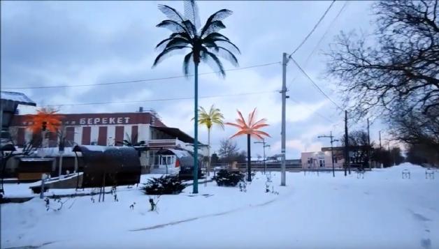 Пальмы в Межводном